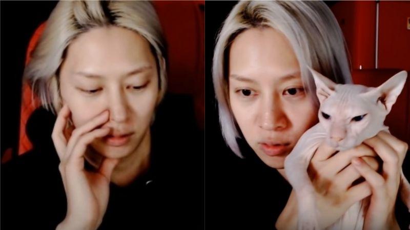 金希澈直播与粉丝们互动:「感谢刘在锡在大赏感言中提及具荷拉、Sulli,觉得他特别帅气」